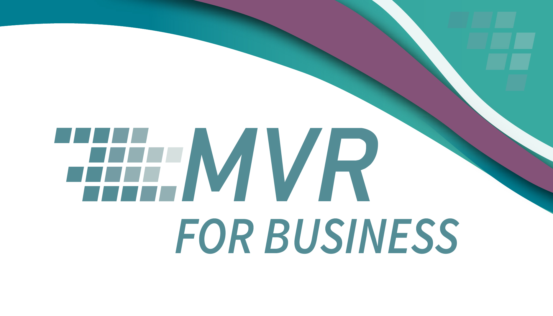 MVR for Business launch